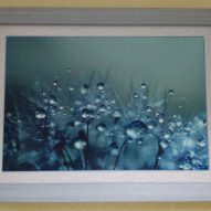Картина в декоративной рамке Цветы после дождя 390х280 мм
