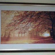 Картина в декоративной рамке 650х450 мм