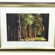 Картина в декоративной рамке 450x350 мм