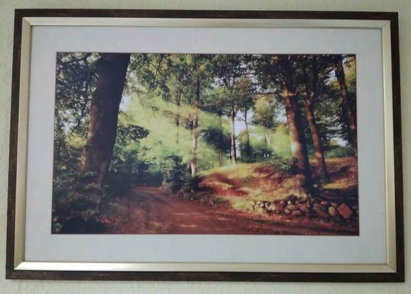 Постер в декоративной рамке «Солнце в лесу» 650x450 мм