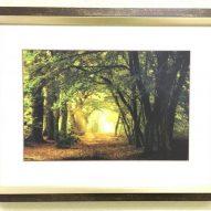 Картина в декоративной рамке Свежесть 450x350 мм