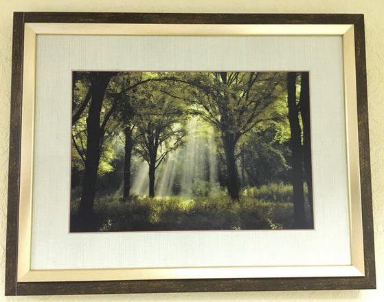 Интерьерная печать на бумаге «Утро в лесу»