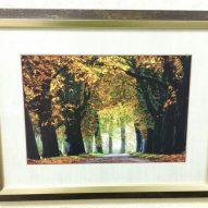 Картина в декоративной раме Золотая осень 450x350 мм