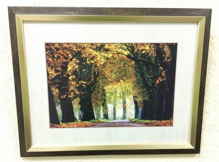 Интерьерная печать на бумаге «Золотая осень»