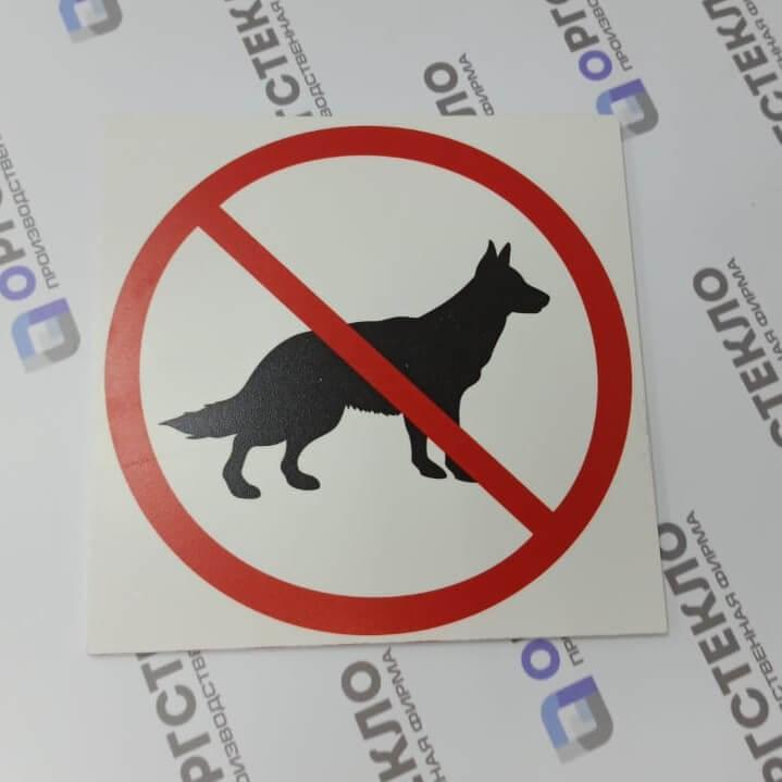 Табличка «с животными запрещено» 200*200 ПВХ